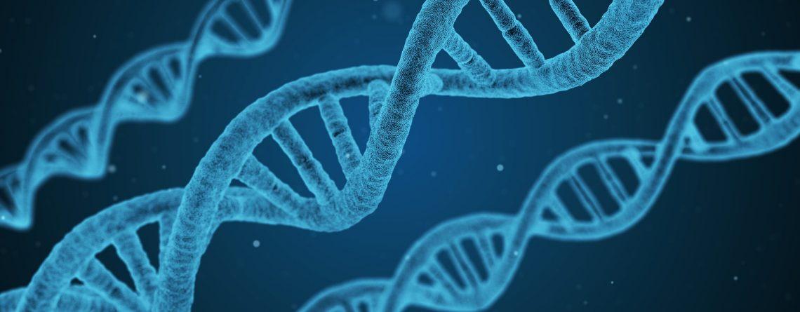 Charla sobre biología molecular