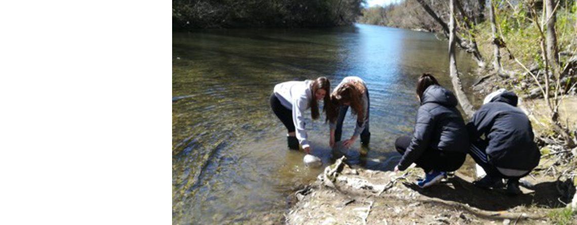 Biodiversidad y calidad del río