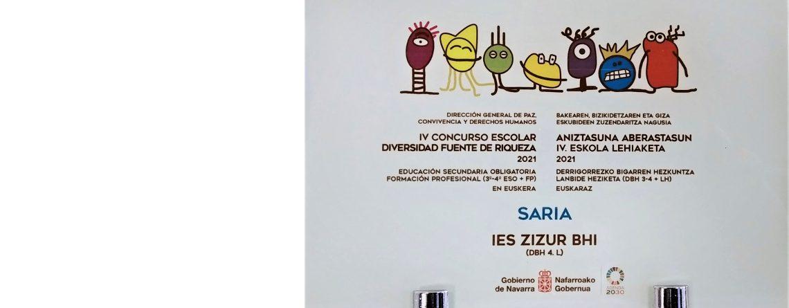 El IES Zizur BHI gana el Concurso Escolar 'Diversidad fuente de riqueza'